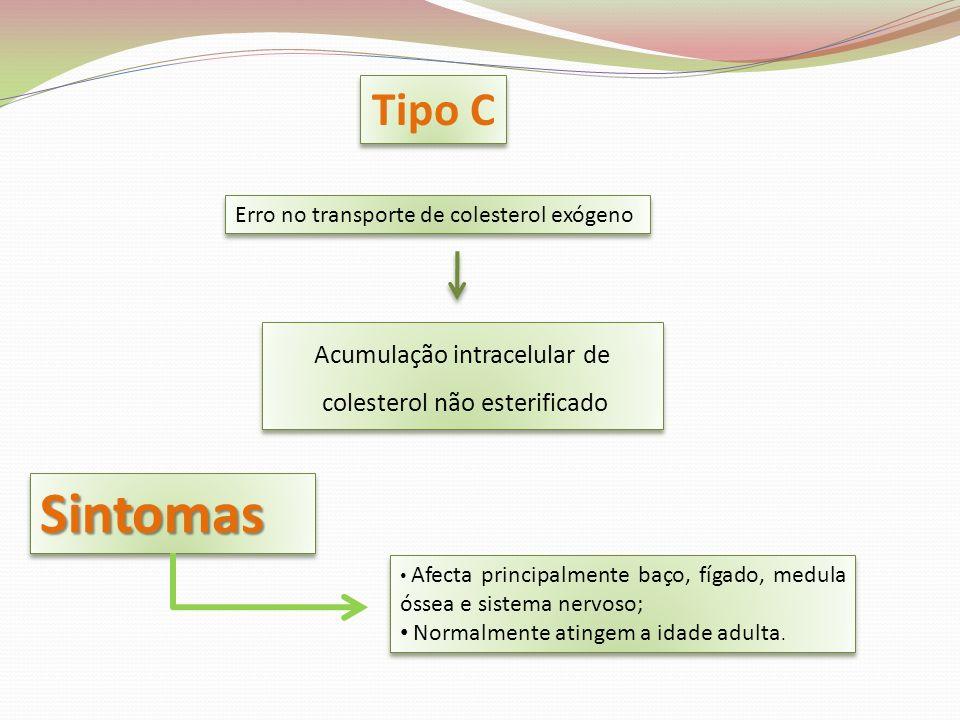 Sintomas Tipo C Acumulação intracelular de colesterol não esterificado