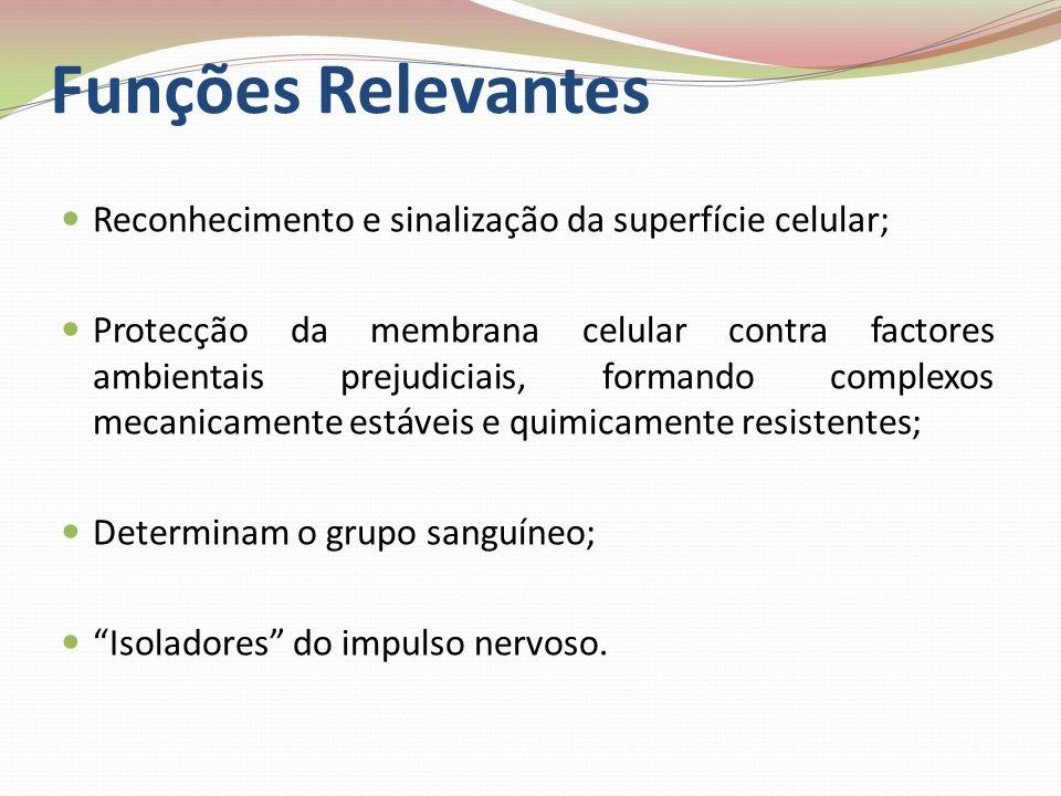 Funções Relevantes Reconhecimento e sinalização da superfície celular;