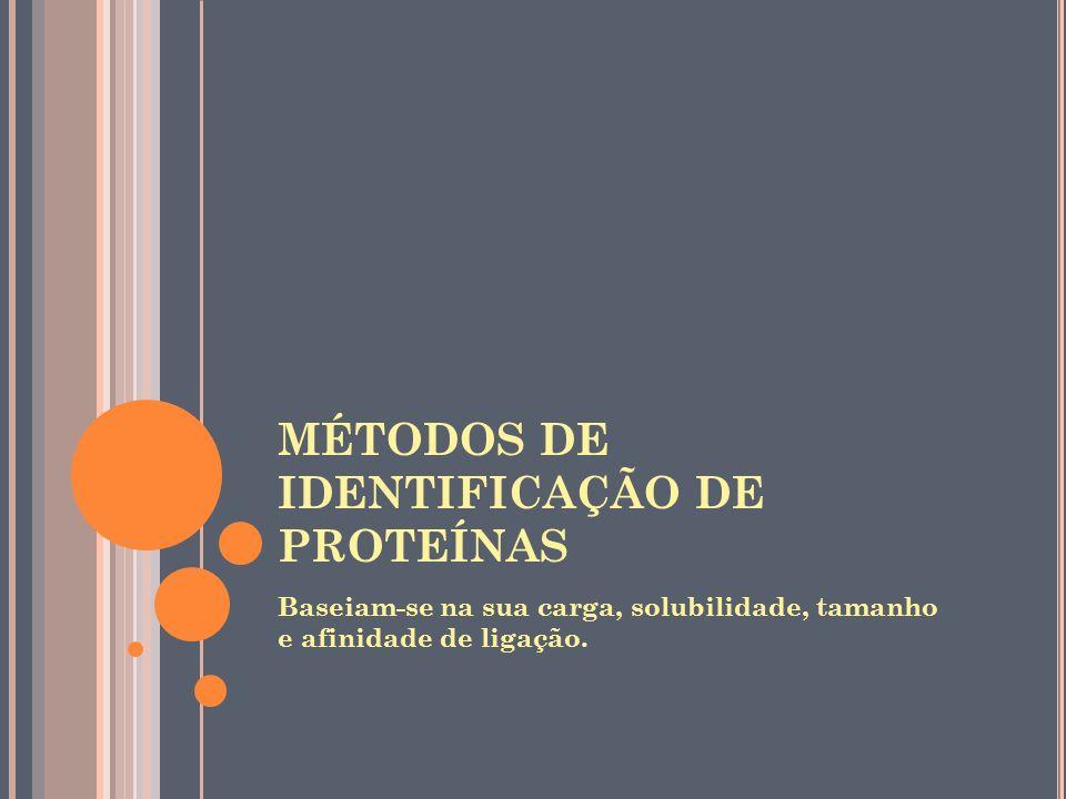 MÉTODOS DE IDENTIFICAÇÃO DE PROTEÍNAS