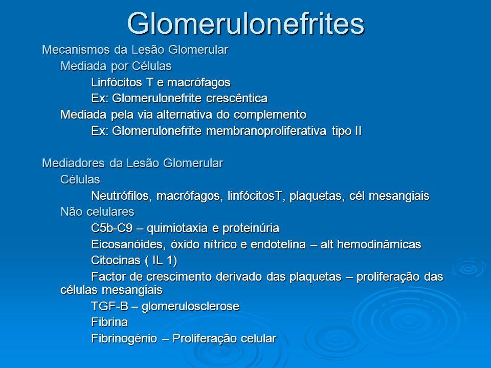 Glomerulonefrites Mecanismos da Lesão Glomerular Mediada por Células