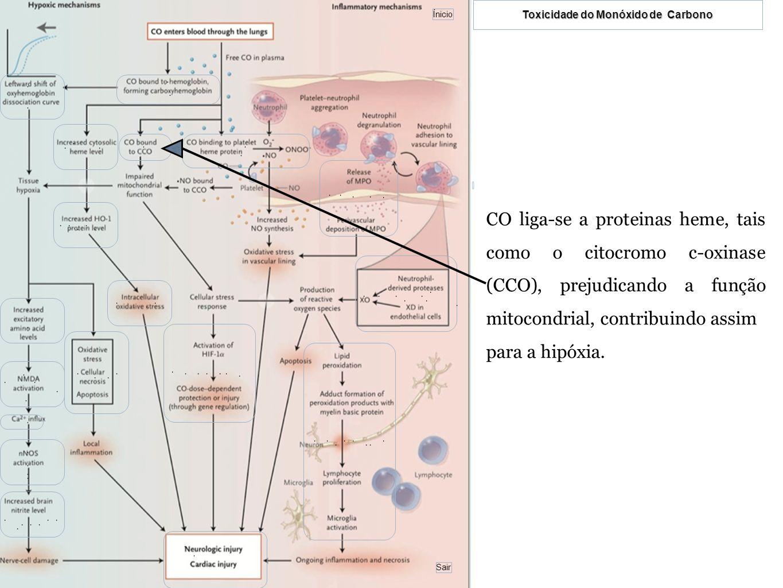 CO liga-se a proteinas heme, tais como o citocromo c-oxinase (CCO), prejudicando a função mitocondrial, contribuindo assim