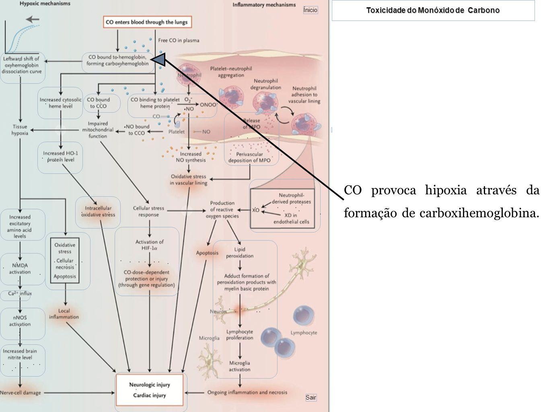 CO provoca hipoxia através da formação de carboxihemoglobina.