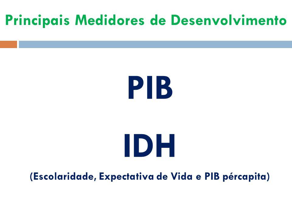 Principais Medidores de Desenvolvimento