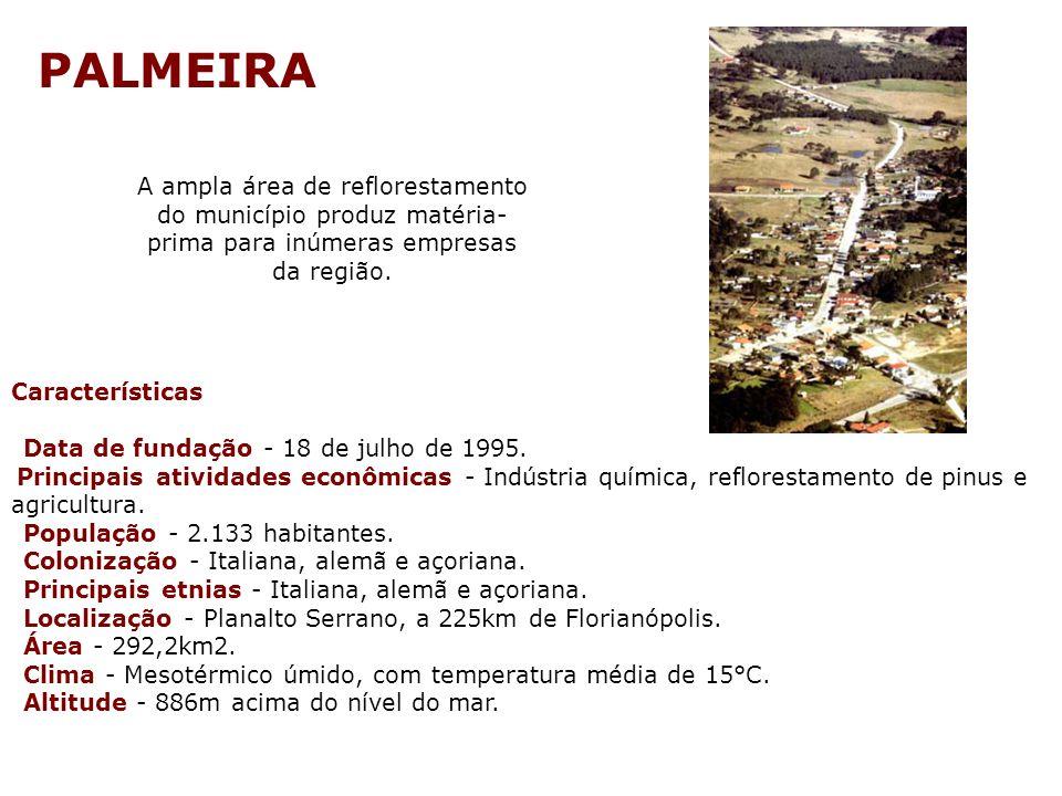 PALMEIRA A ampla área de reflorestamento do município produz matéria-prima para inúmeras empresas da região.