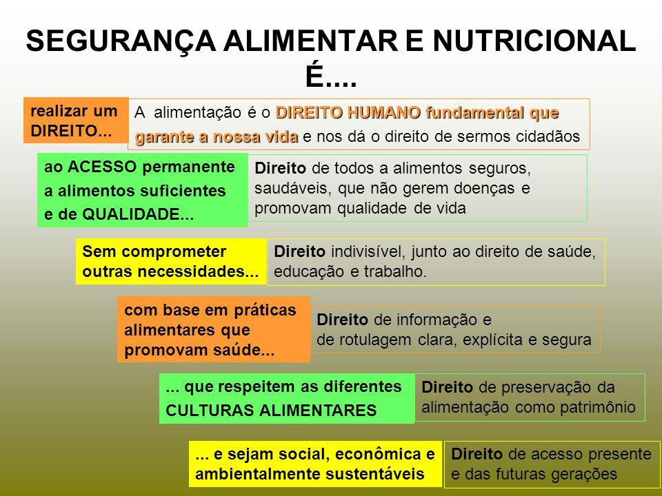 SEGURANÇA ALIMENTAR E NUTRICIONAL É....