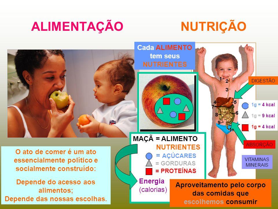 ALIMENTAÇÃO NUTRIÇÃO Cada ALIMENTO tem seus NUTRIENTES MAÇÃ = ALIMENTO