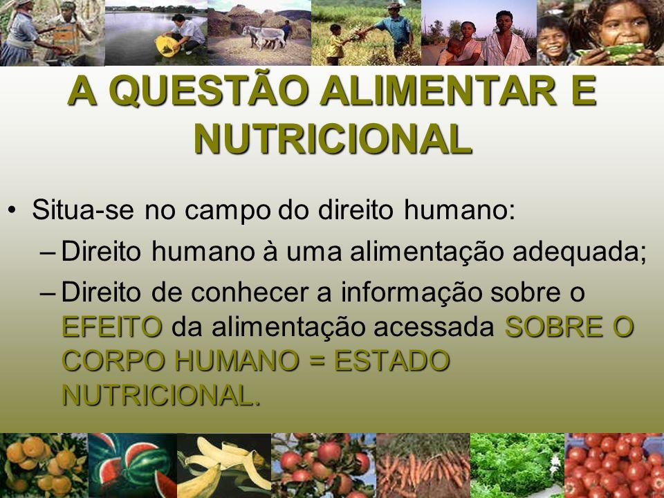 A QUESTÃO ALIMENTAR E NUTRICIONAL