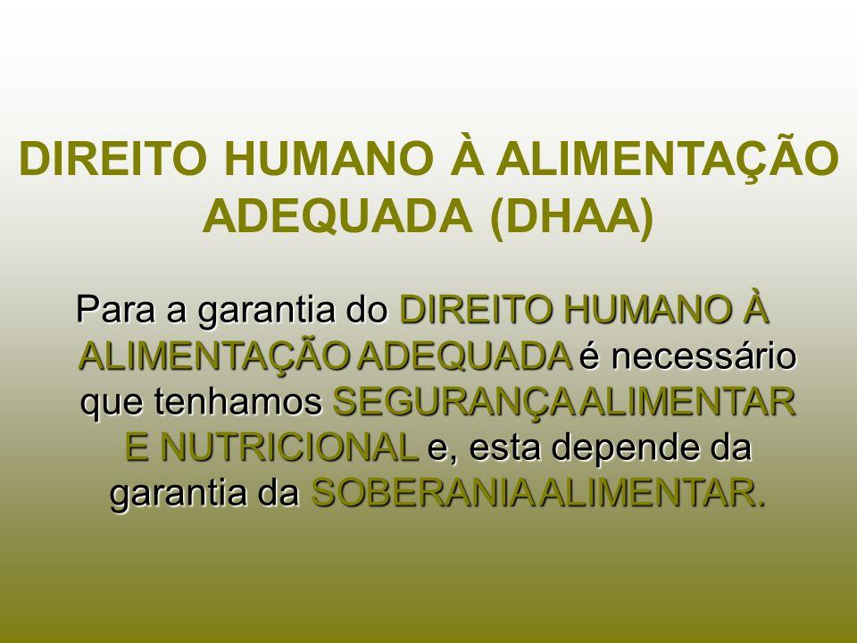 DIREITO HUMANO À ALIMENTAÇÃO ADEQUADA (DHAA)