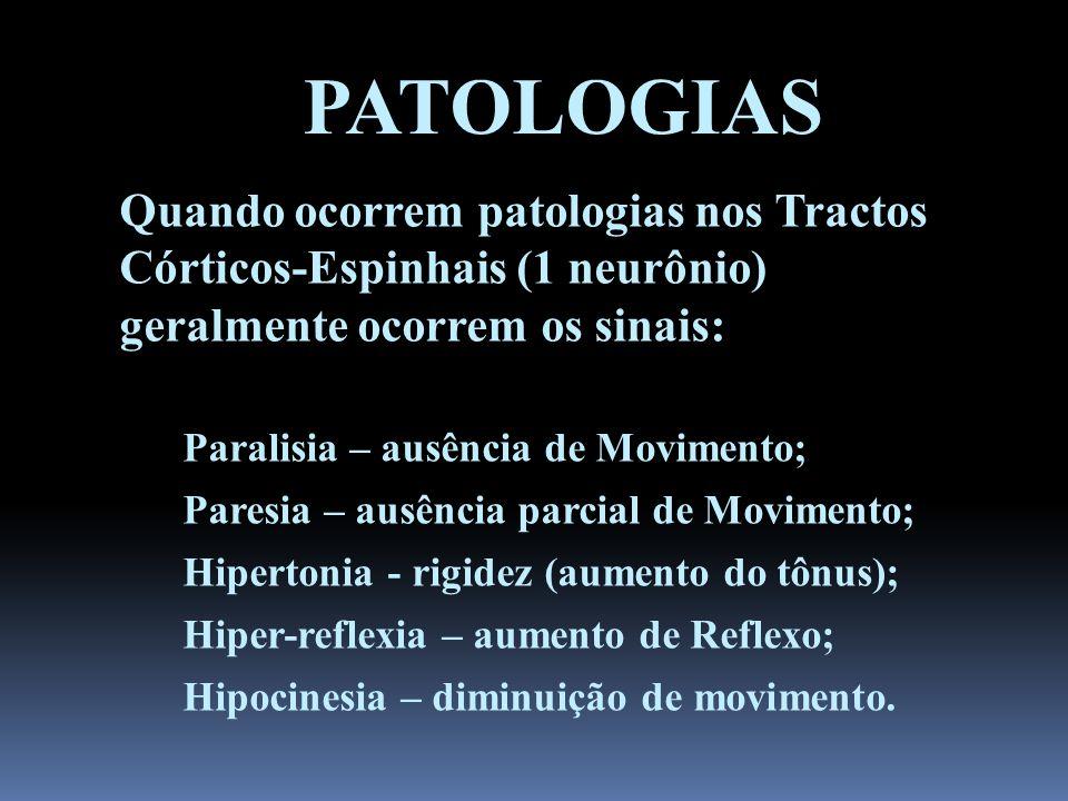 PATOLOGIAS Quando ocorrem patologias nos Tractos Córticos-Espinhais (1 neurônio) geralmente ocorrem os sinais: