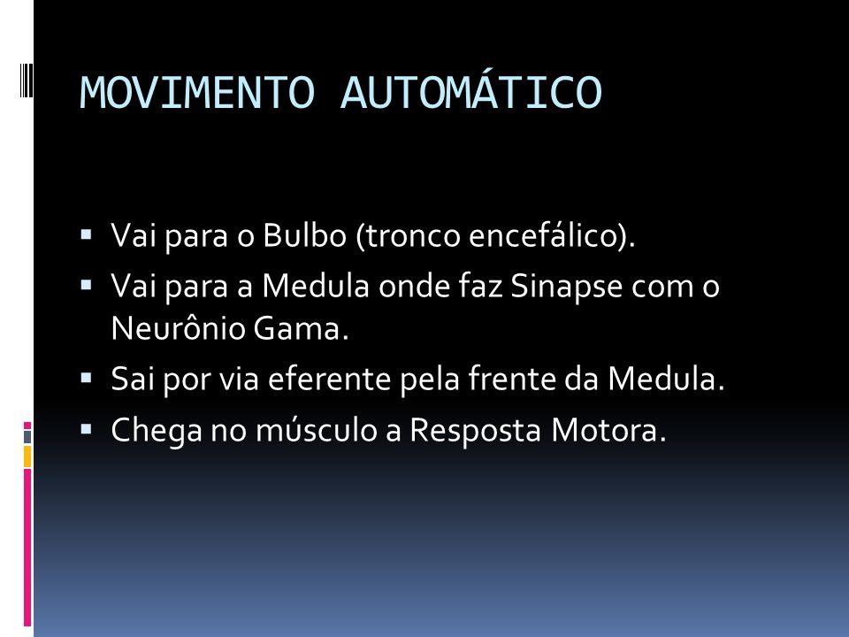 MOVIMENTO AUTOMÁTICO Vai para o Bulbo (tronco encefálico).