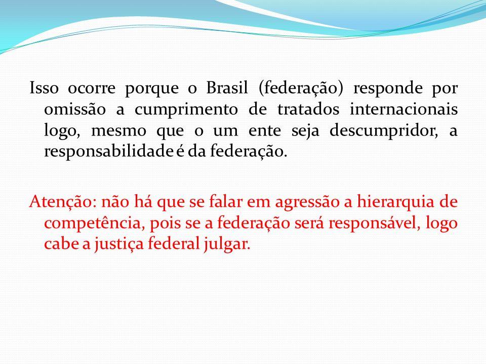 Isso ocorre porque o Brasil (federação) responde por omissão a cumprimento de tratados internacionais logo, mesmo que o um ente seja descumpridor, a responsabilidade é da federação.