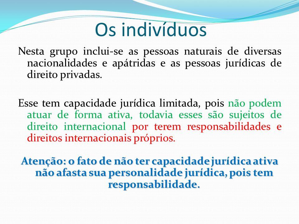 Os indivíduos Nesta grupo inclui-se as pessoas naturais de diversas nacionalidades e apátridas e as pessoas jurídicas de direito privadas.