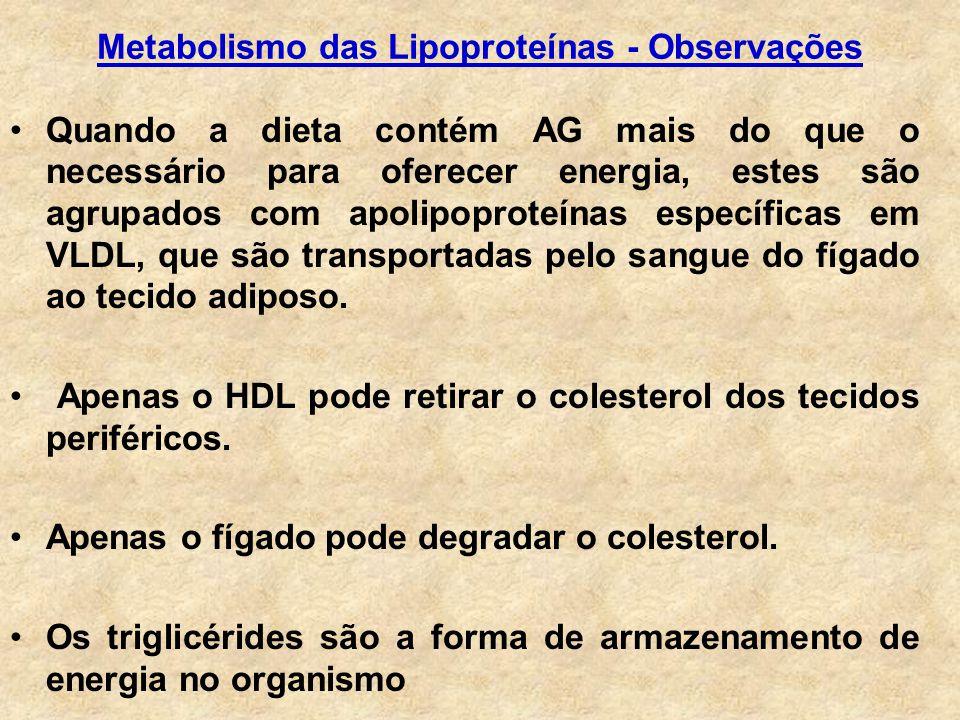 Metabolismo das Lipoproteínas - Observações
