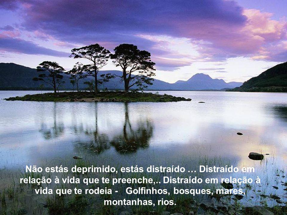 Não estás deprimido, estás distraído … Distraído em relação à vida que te preenche,.. Distraído em relação à vida que te rodeia - Golfinhos, bosques, mares, montanhas, rios.