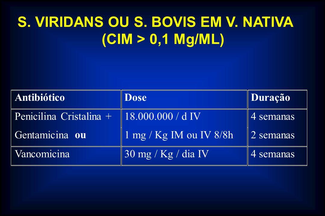 S. VIRIDANS OU S. BOVIS EM V. NATIVA (CIM > 0,1 Mg/ML)