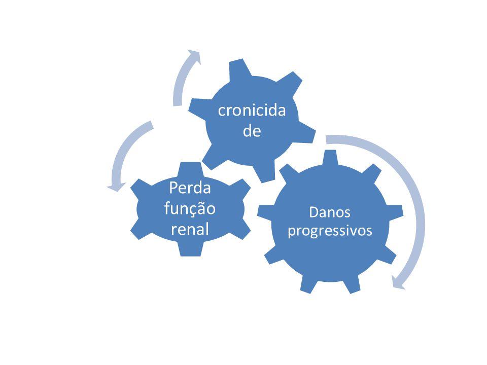 Danos progressivos Perda função renal cronicidade