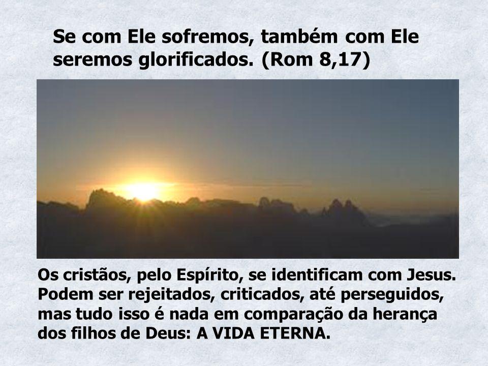 Se com Ele sofremos, também com Ele seremos glorificados. (Rom 8,17)