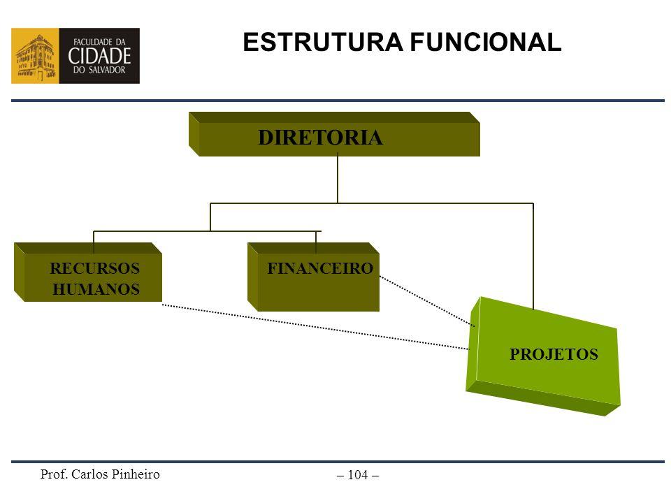 ESTRUTURA FUNCIONAL DIRETORIA PROJETOS RECURSOS HUMANOS FINANCEIRO