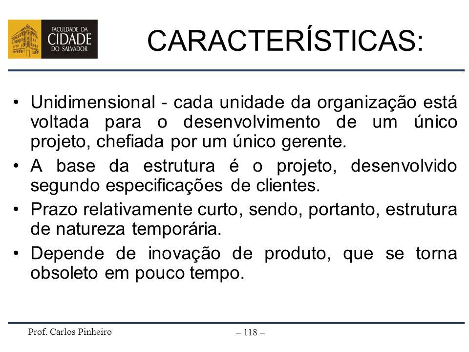 CARACTERÍSTICAS:Unidimensional - cada unidade da organização está voltada para o desenvolvimento de um único projeto, chefiada por um único gerente.