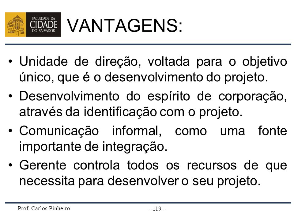 VANTAGENS: Unidade de direção, voltada para o objetivo único, que é o desenvolvimento do projeto.