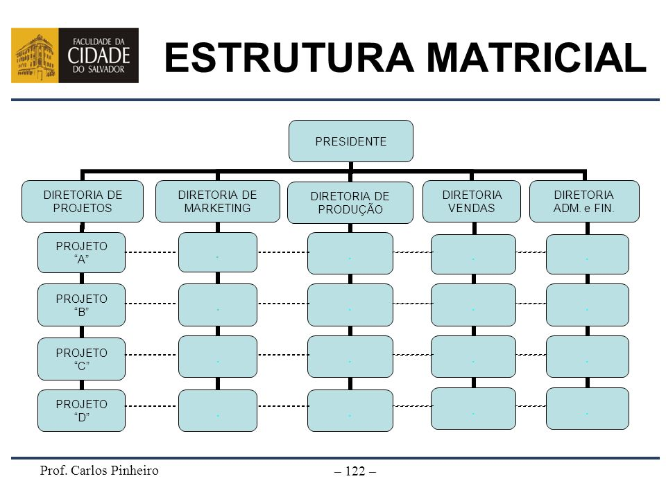 ESTRUTURA MATRICIAL Prof. Carlos Pinheiro