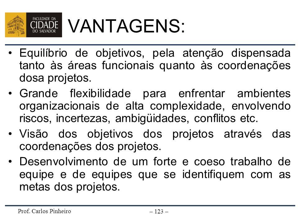 VANTAGENS:Equilíbrio de objetivos, pela atenção dispensada tanto às áreas funcionais quanto às coordenações dosa projetos.