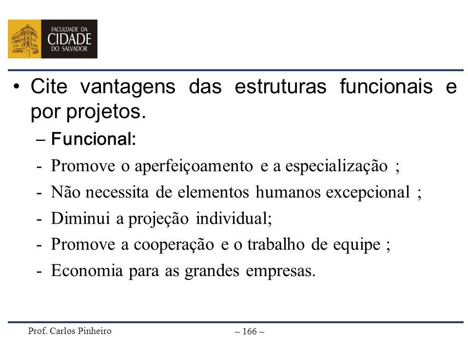 Cite vantagens das estruturas funcionais e por projetos. Funcional: