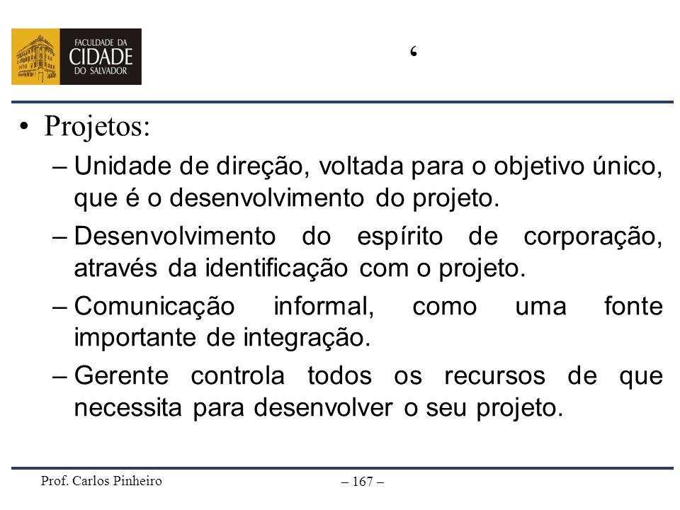 'Projetos: Unidade de direção, voltada para o objetivo único, que é o desenvolvimento do projeto.