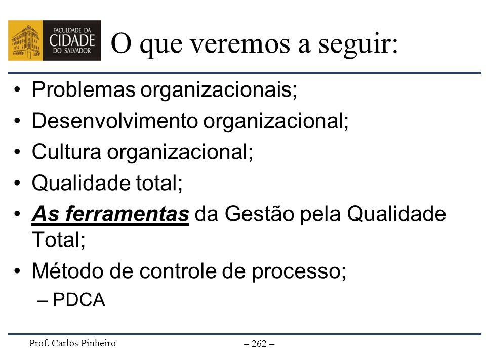 O que veremos a seguir: Problemas organizacionais;