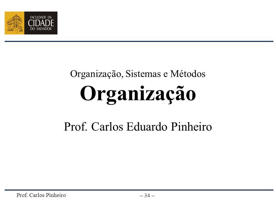 Organização, Sistemas e Métodos Organização