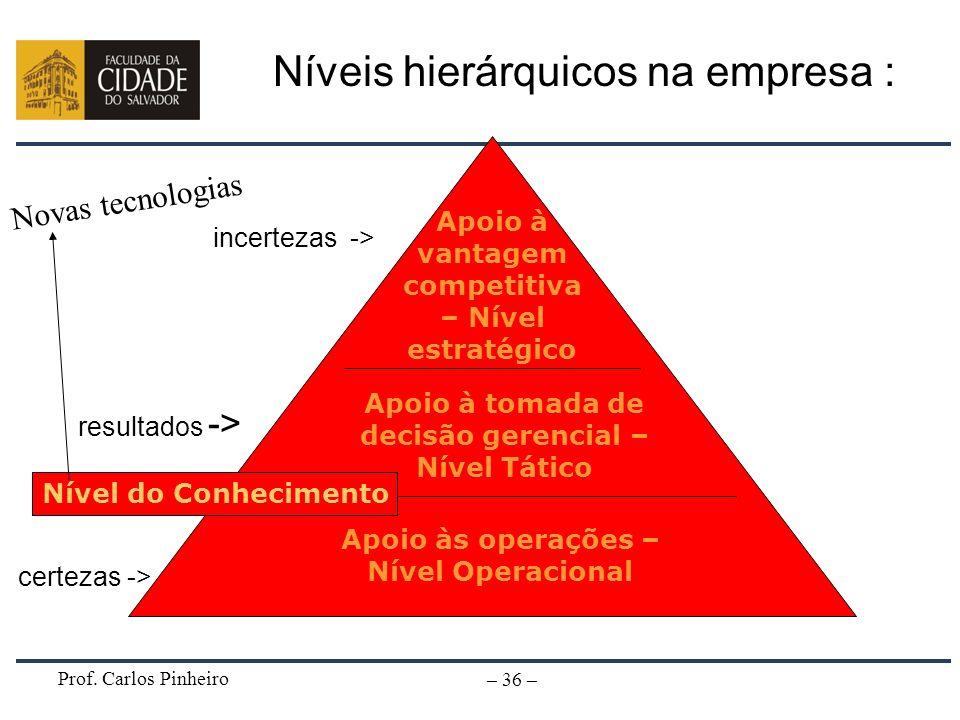 Níveis hierárquicos na empresa :