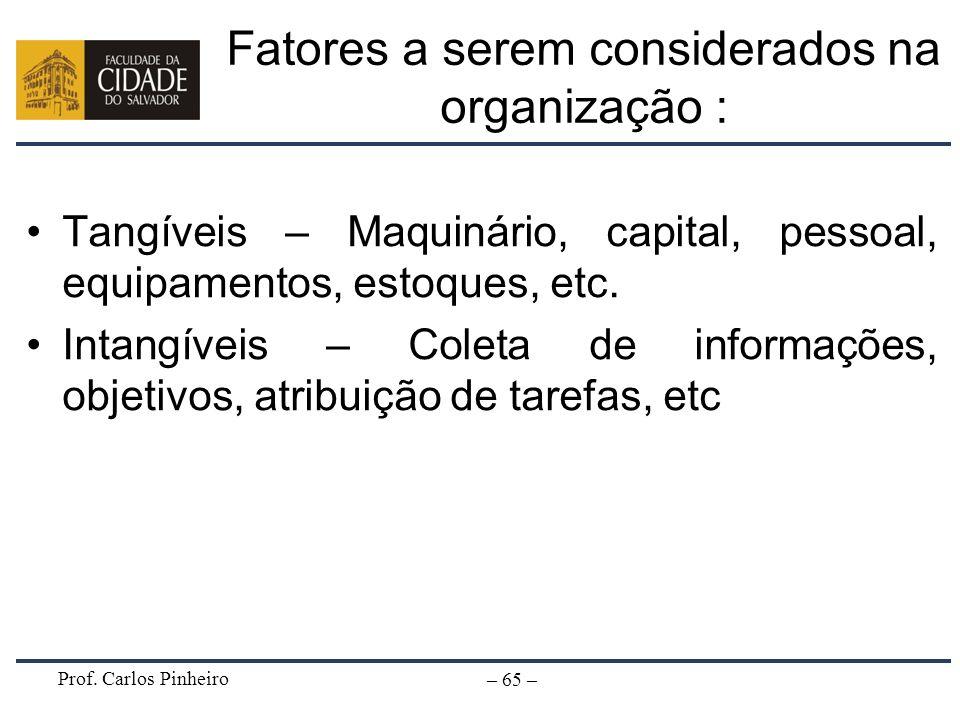 Fatores a serem considerados na organização :