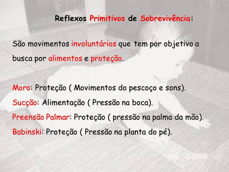 Reflexos Primitivos de Sobrevivência: