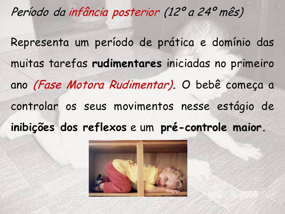 Período da infância posterior (12º a 24º mês)
