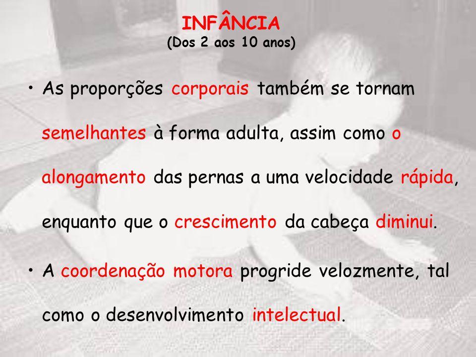 INFÂNCIA (Dos 2 aos 10 anos)