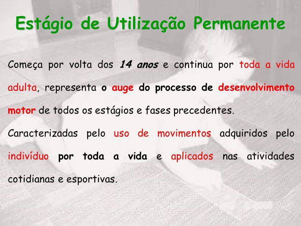 Estágio de Utilização Permanente