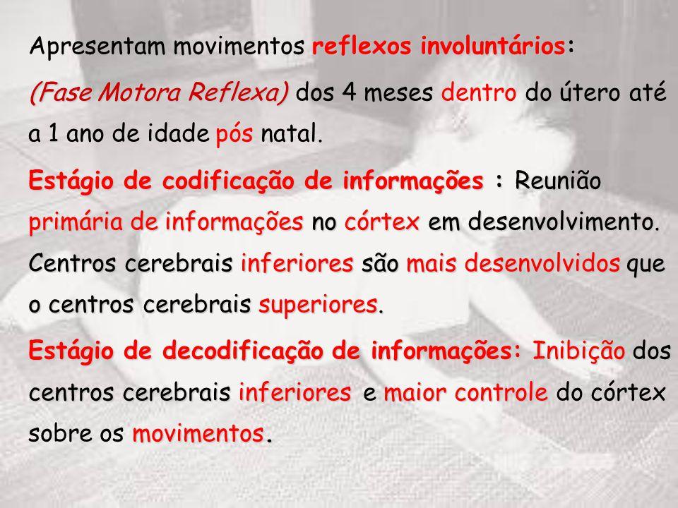 Apresentam movimentos reflexos involuntários: