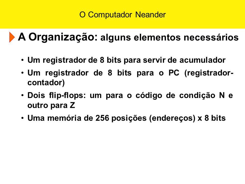 A Organização: alguns elementos necessários
