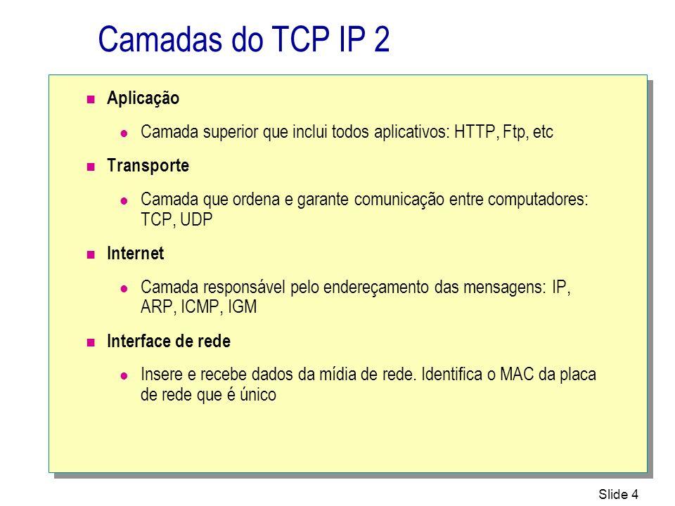 Camadas do TCP IP 2 Aplicação