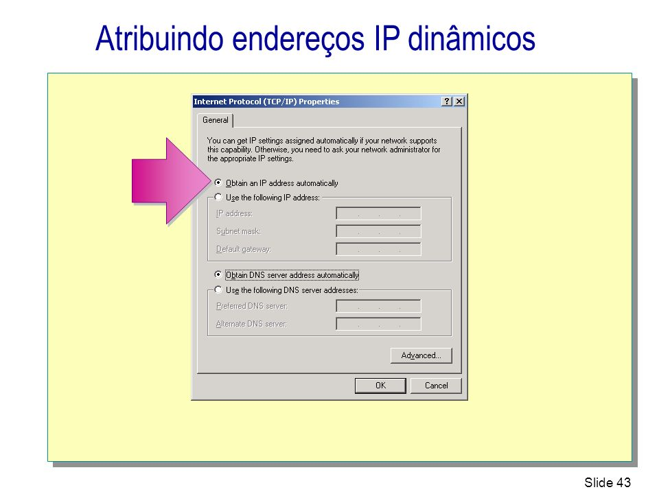 Atribuindo endereços IP dinâmicos