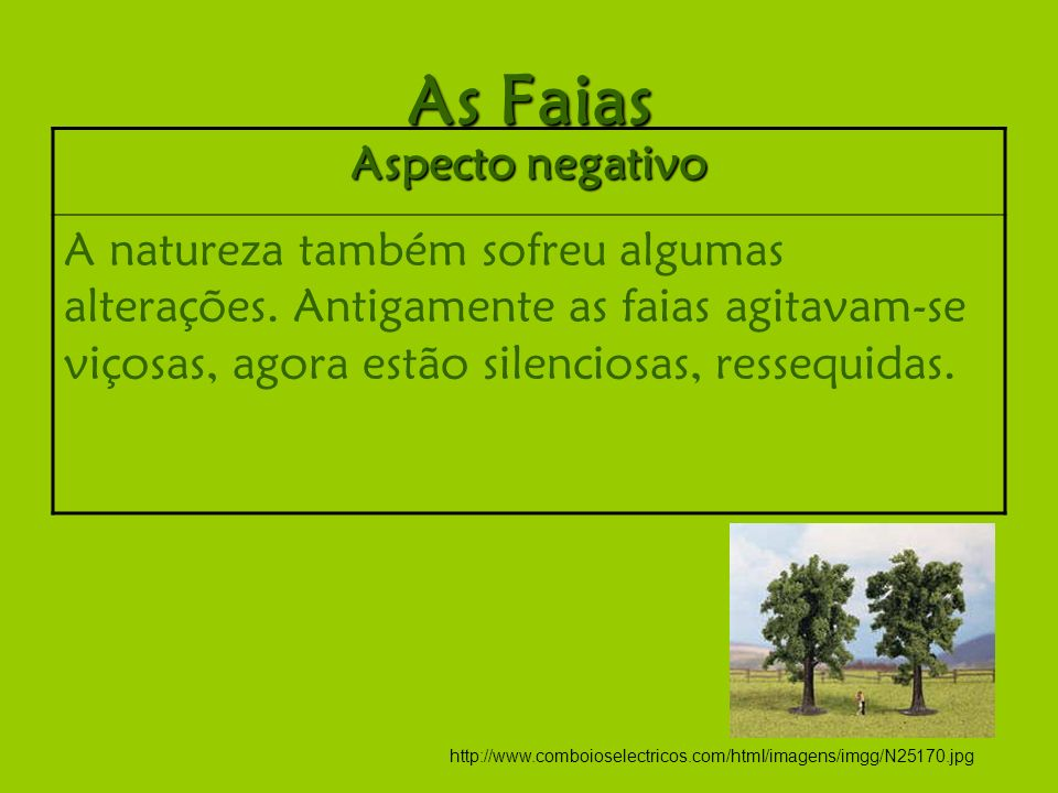 As Faias Aspecto negativo