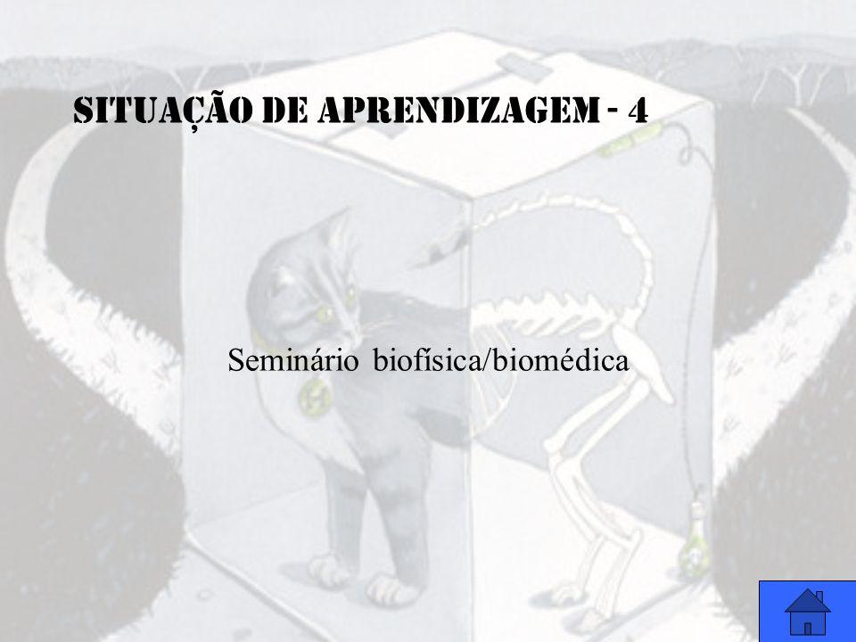 SITUAÇÃO DE APRENDIZAGEM - 4