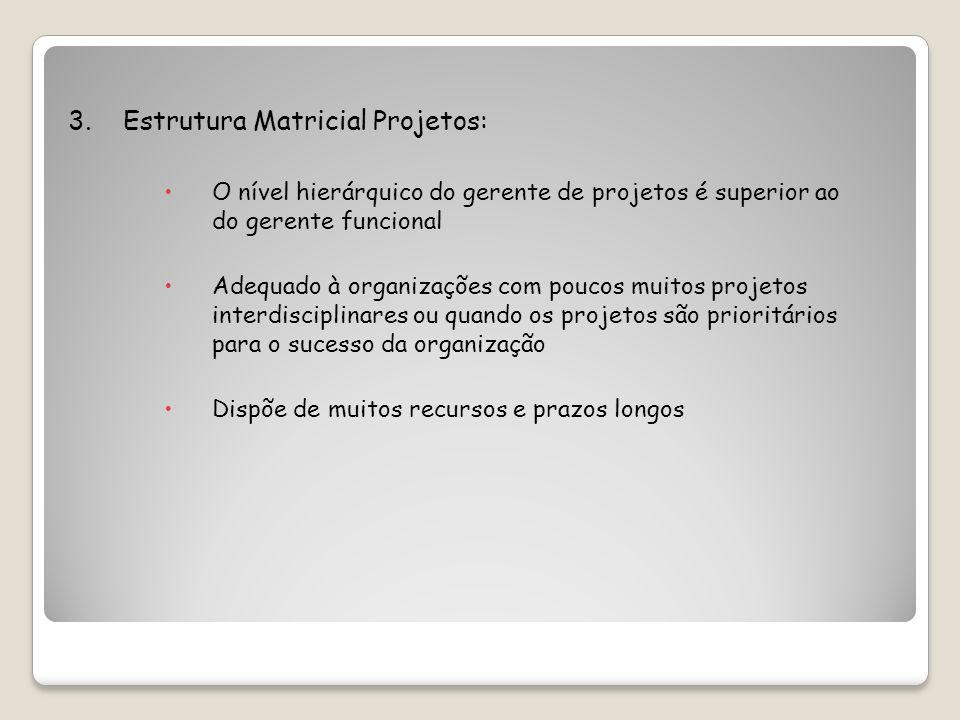 3. Estrutura Matricial Projetos: