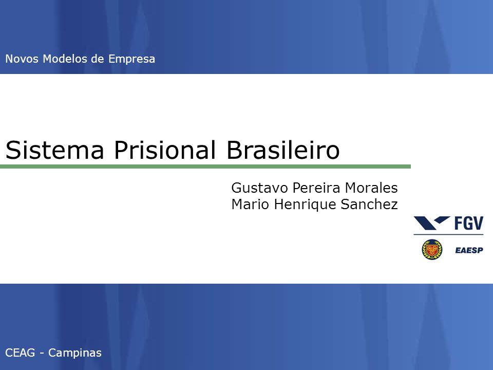 Sistema Prisional Brasileiro