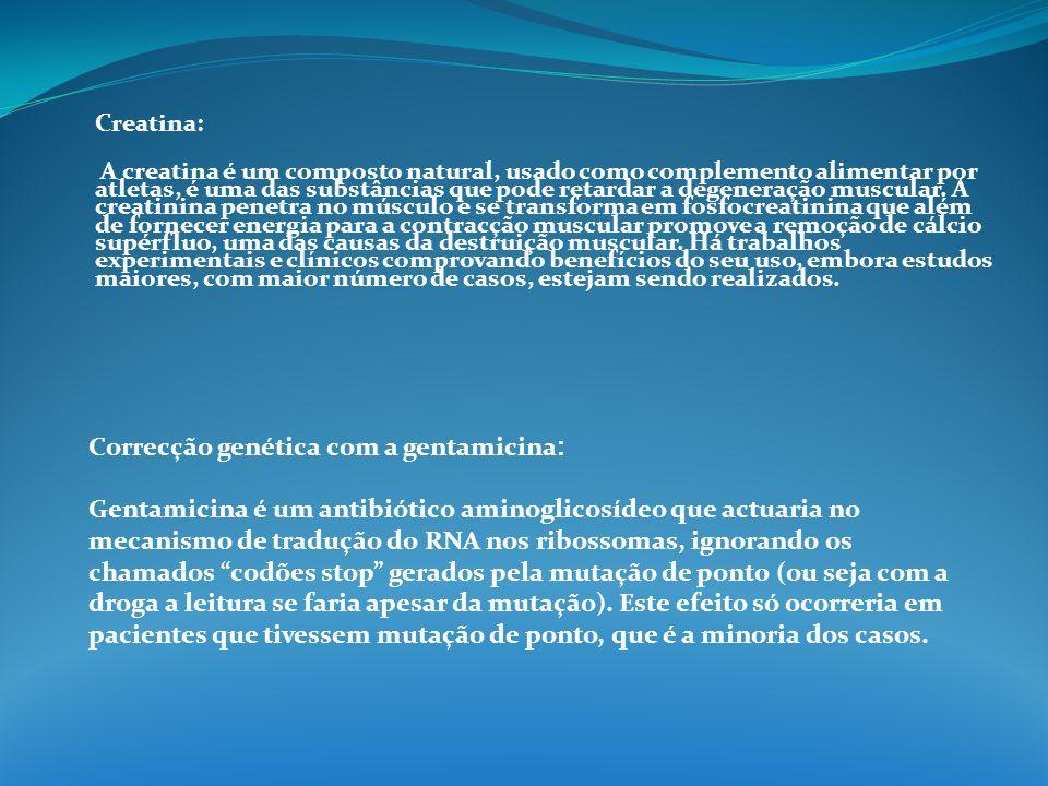 Correcção genética com a gentamicina:
