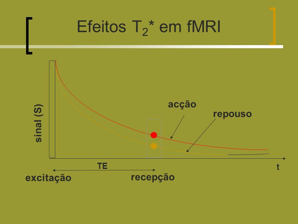Efeitos T2* em fMRI acção repouso sinal (S) TE t excitação recepção