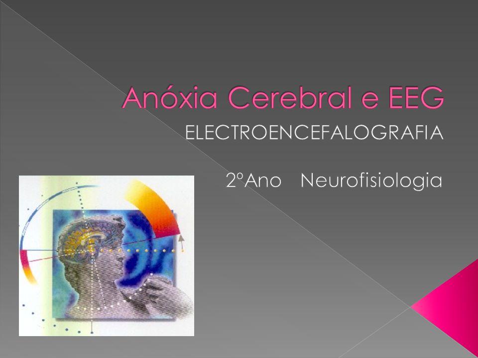 ELECTROENCEFALOGRAFIA 2ºAno Neurofisiologia