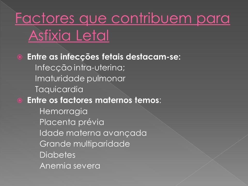 Factores que contribuem para Asfixia Letal
