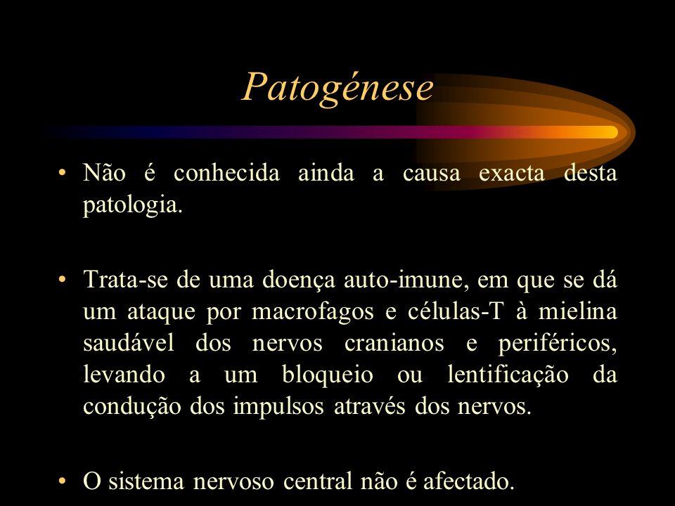 Patogénese Não é conhecida ainda a causa exacta desta patologia.