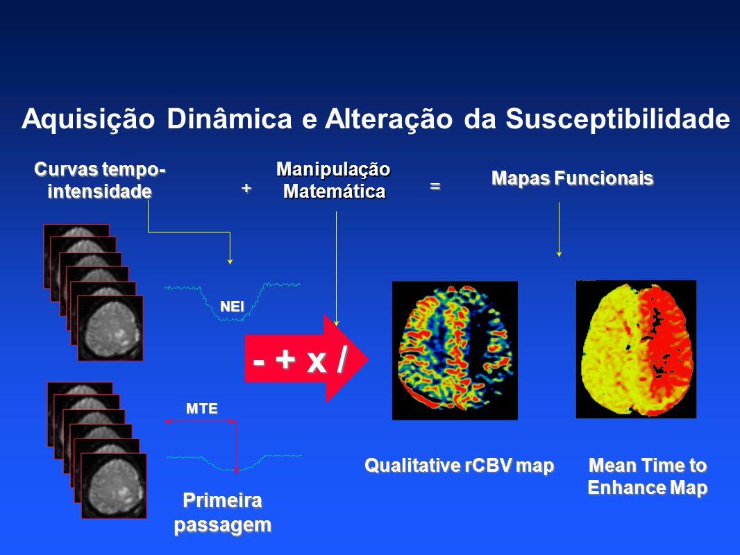 - + x / Aquisição Dinâmica e Alteração da Susceptibilidade Primeira
